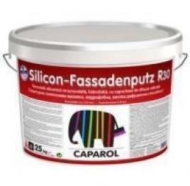 Caparol Silicon Fassadenputz R20